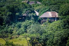 Karkloof Safari Spa is located in the KZN Midlands and offers 5 star luxury villas within a game reserve. Daily game drives, a luxury spa and Luxury Spa, Luxury Villa, Wooden Walkways, Game Reserve, Romantic Getaway, Time Out, Villas, Safari, Heaven