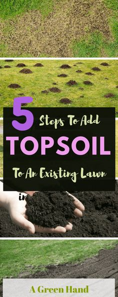 How to add topsoil to an existing lawn: 5 Easy Steps Guide. Adding topsoil to existing lawn can be quite challenging, and this is more so if you do not know how to do it well and do not use the right soil and tools Garden Soil, Garden Care, Lawn And Garden, Balcony Garden, Herb Garden, Terrace, Organic Gardening, Gardening Tips, Indoor Gardening