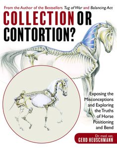 Collection or Contortion? Exposing the Misconceptions and Exploring the Truths of Horse Positioning by Dr. Gerd Heuschmann