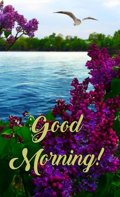 Morning Wish, Mountains, Nature, Travel, Naturaleza, Viajes, Destinations, Traveling, Trips