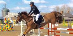 Eliminated Showjumper Attacks and Tramples Spectator for Filming