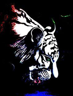 White Tiger  Jungle Oasis   Polarized by ShatteredVisAbility