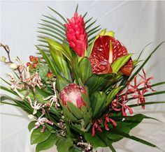 Loving Red Bouquet Ginger, Anthurium, Protea, Pink Tiger Orchid, Black Annie Orchid, Hypericum Berries   $50.00  www.dutchmillflowershop.com Ikebana, Annie, Orchids, Valentines Day, Berries, Bouquet, Plants, Red, Pink