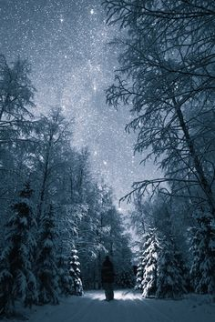 This is exactly the way it looks on a country road after the first snow of the year. With all the stars and the glisten of the snow Night Walk - by Tiina Törmänen