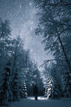 Night Walk - {by Tiina Törmänen} | {Official WebSite}