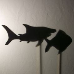Shark and fish shadow puppets