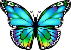 Butterfly wing clipart from unixTitan. 15 Butterfly wing clipart freeuse professional designs for business and education. Clip art is a great way to help illustrate your diagrams and flowcharts. Butterfly, the Nectar Feeder Butterfly Drawing, Butterfly Pictures, Butterfly Painting, Butterfly Wallpaper, Butterfly Cards, Blue Butterfly, Printable Butterfly, Beautiful Butterflies, Rock Art