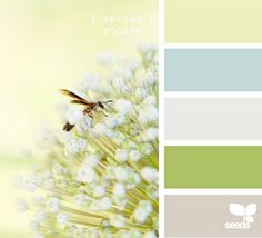 Spring colors....going natural in the house this year. greens, creams, white & a little black for contrast.!