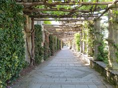Pergola Walk in the Italian Garden at Hever Castle #spring