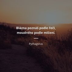 Blázna poznáš podle řeči, moudrého podle mlčení. -  Pythagoras #moudrost Motto, Digital Marketing Trends, Story Quotes, Co Parenting, Powerful Words, Carpe Diem, Woman Quotes, True Stories, Drake
