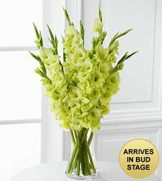 green gladious bouquet - Google Search