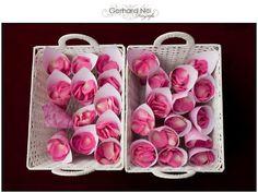 DIY: rozenblaadjes strooien - Pinterested @ http://wedspiration.com.