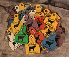 Custom ear tag key chains - this would be super cute as a show team thank you at the end of fair
