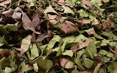 Looking for the best Camouflage Netting? At Camonets, we will provide you with the best military camo netting at the best prices, and you don't have to compromise on the quality. Contact us today to know more about us.