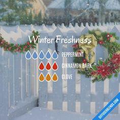 Winter Freshness Diffuser Blend
