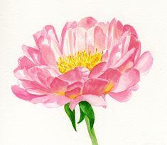 watercolour palettes — desenharts: by AshleyRose