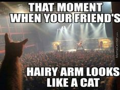 That moment when your friend's hairy arm looks like a cat.