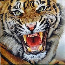 Bengal Cats For Sale Original Tiger Paintings Indian African Bengal Siberian Tigress Cubs Ranthamboure The Watchmen Close Enough The Warrior Tigers for sale by Alan M Hunt best Bengalischer Tiger, Wild Tiger, Bengal Tiger, Angry Tiger, Bengal Cats, Tiger Artwork, Tiger Painting, Jaguar, Tiger Species