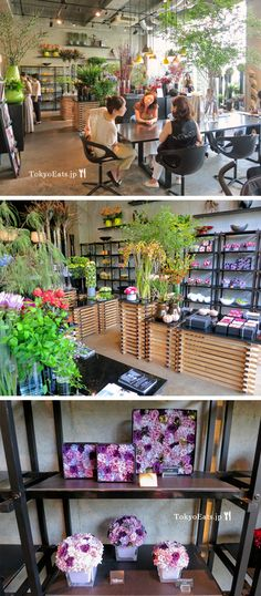 Nicolai Bergmann: Aoyama Omotesando. Flower Shop and Cafe.