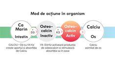 ✨NOU✨ CALCIU+D3 cu vit. K2®️ – formulă superioară cu Calciu, Vitamina D3 și K2 100% naturale NOUL produs CALCIU+D3 cu vit. K2®️susține: densitate osoasă optimă și sănătatea sistemelor osteoarticular, muscular, nervos și imunitar. Vitamins And Minerals, Chart