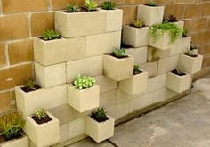 I like this idea, I have lots of room to plant stuff outdoors but this would be more decorative than anything.