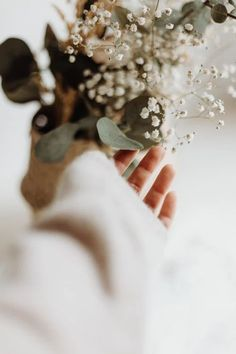 Hand Photography, Close Up Photography, Spirit Photography, Hipster Photography, Flower Aesthetic, White Aesthetic, Free High Resolution Photos, Aesthetic Pictures, Instagram Feed