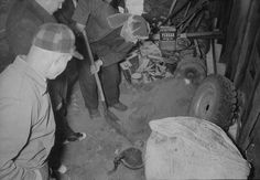 As investigators searched the rest of the house for evidence, they discovered human skulls, human skin lampshades, human skullcaps and the head of Mary Hogan in a paper bag to name a few. In this overhead photo, police investigators are pictured digging for evidence in a garage on the property of murderer and body snatcher Ed Gein, Plainfield, Wisconsin, late November, 1957.