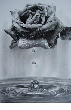 a rose by princepen on deviantART