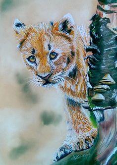 Shy Little Lion | Pastellum