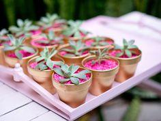 Succulent Party Favors - Desert Chic