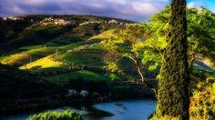 Dawn at Douro river near Pinhão , Portugal