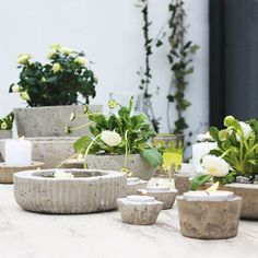 DIY Concrete planters from BHG