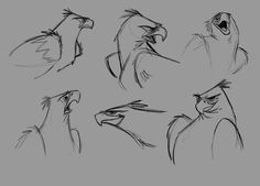 joma santiago: Eagle and Owl character designs – Character Design Cartoon Sketches, Animal Sketches, Drawing Sketches, Drawing Tips, Eagle Cartoon, Cartoon Birds, Character Design Tutorial, Character Design Inspiration, Bird Drawings