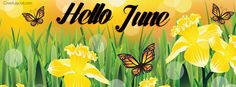 Hello June Facebook Cover coverlayout.com