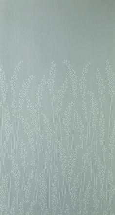 Feather Grass BP 5101