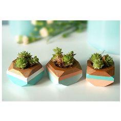 Set of 3 geometric mini planters in blue. A roll designs