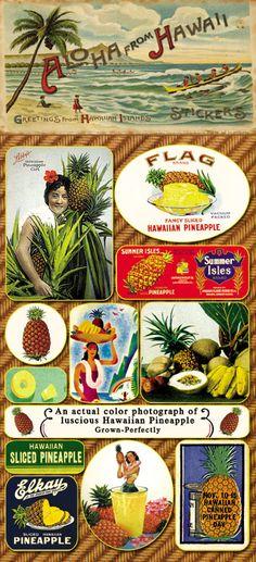 Vintage Pineapples