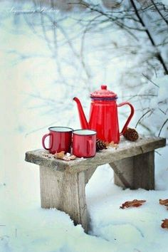 Tea time in snow