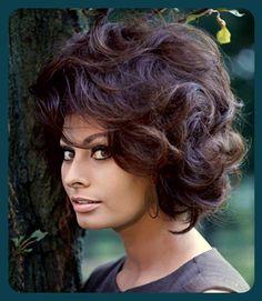summers-in-hollywood: Sophia Loren, Photo. - Summers in Hollywood Hollywood Stars, Old Hollywood, Classic Hollywood, Carlo Ponti, Britt Ekland, Sophia Loren Images, Olivia De Havilland, Italian Beauty, Italian Women