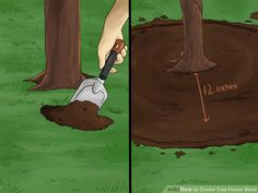 Correct way to plant a flower bed around oak tree.