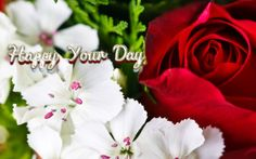 Red Rose With White Flower Wallpaper Flowers Dp, Red And White Flowers, Vintage Flowers, Colorful Flowers, Red Roses, Yellow Roses, Flower Images Free, Beautiful Flowers Images, Flower Pictures