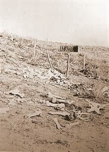 Image result for Little Bighorn Bodies