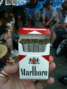 Replace Your Cigarettes, Smoke Weed Without the Poison… Malboro, 420 Girls, Stoner Girl, Buy Weed, Jolie Photo, Smoking Weed, Ganja, Medical Marijuana, Good Vibes