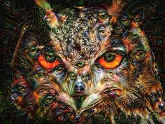 Owl portrait processed with the Google Deep Dream algorithm. this is what comes out when machines are dreaming: a colorful, surreal and trippy bird picture. Look at it from the distance and you see an owl - get closer to see the dogs... Available as poster, framed fine art print or canvas print. (c) Matthias Hauser hauserfoto.com