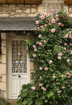 New Pergola Ideas Entrance Climbing Roses Ideas Garden Cottage, Rose Cottage, Cottage Style, Cottage Door, Garden Living, Beautiful Gardens, Beautiful Flowers, Paris Home, Colorful Roses