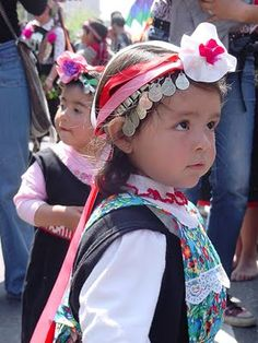 Mapuche children are indigenous to central/southern Chile and southwest Argentina by iris-flower