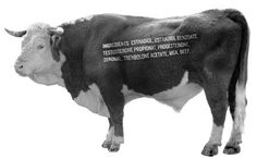 Livestock became less and less natural and more manufactured.