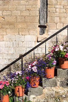 Pretty Summer Flowers in Pots on Steps at Barton Farm Country Park Bradford on Avon Wiltshire England, via Flickr.