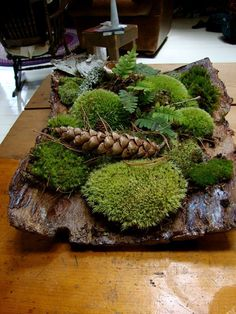 of my friends on the Canadian garden trips was a master at quickly creating the most beautiful tableaus from bark, moss, leaves and stones. This is one of her centerpieces, which changed on an almost daily basis. Moss Garden, Garden Art, Garden Stones, Ikebana, Frozen Bubbles, Christmas Diy, Christmas Decorations, Autumn Decorations, Deco Table Noel