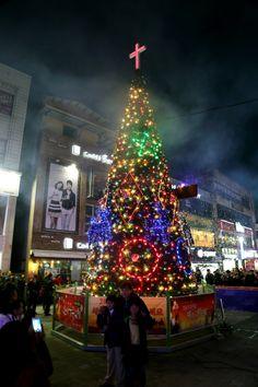 2013 성탄트리 점화식(문화의 거리, 2013. 11. 30.)